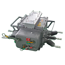 ZW20-12F看门狗分界智能控制真空断路器